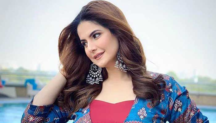 Actress Zarine Khan, Tv show host,