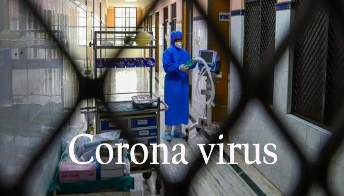 Karona virus patients in India,