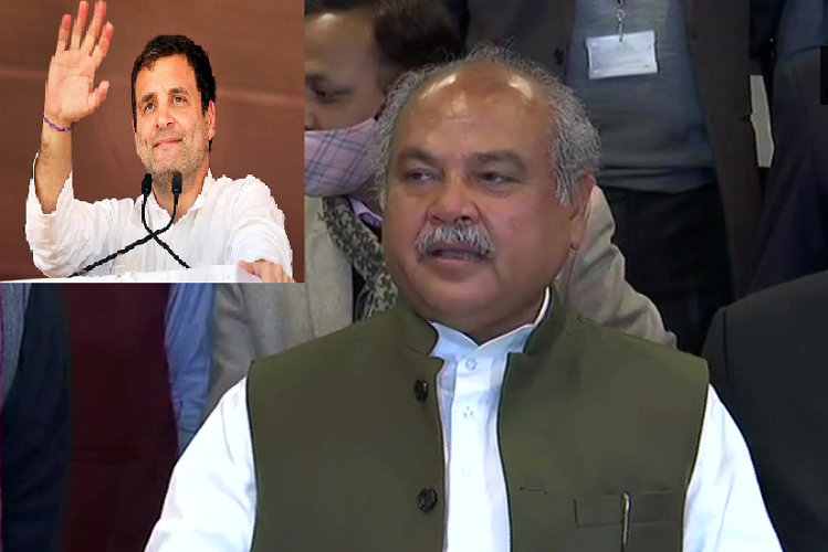 Now Agriculture Minister mocked Rahul Gandhi, said – Congress itself laughs at Rahul's deeds in kisan union talk 9th round in delhi.| national News in Hindi