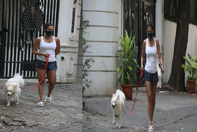 Malaika Arora looked upset due to the lockdown in Mumbai, in the morning with Dog Casper, she was seen on the road outside the house, see photos| entertainment News in Hindi